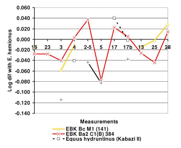 Equids from Emine-Bair-Khosar: Figures