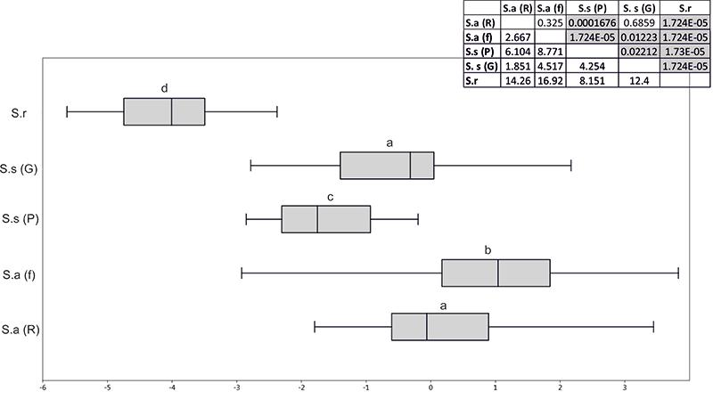 Validity of Sorex subaraneus: Figures