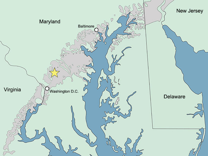 Maryland On Usa Map.Arundel Fauna Of Maryland Usa Figures